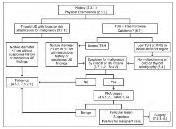Alur Diagnosis Pasien dengan Nodul Tiroid