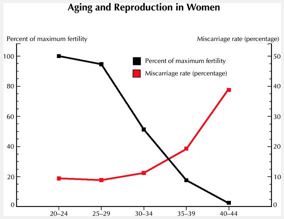 Pengaruh Usia dan Kesuburan pada Wanita